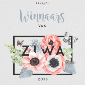 NL-ziwa2016-comunicar-rrss-1